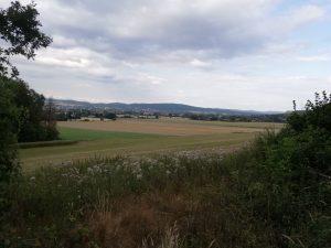 Lemgo-Süd von Trophagen